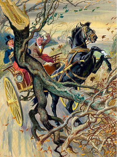 Black Beauty.  As they drive through the storm-swept countryside a great tree came crashing down in their path.  But this was not the greatest peril during the faithful years of Black Beauty.  The novel Black Beauty was only published three months before its author Anna Sewell died in 1877.  Original artwork for illustration on p20 of Look and Learn issue no 26 (14 July 1962). Artwork lent to Look and Learn for scanning by The Gallery of Illustration.