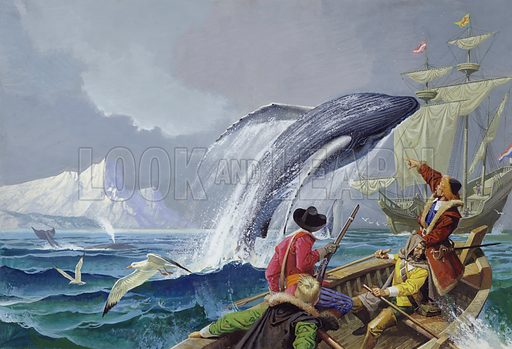 Sighting of whales on one of English explorer Henry Hudson's expeditions to the Arctic in search of a nothern trade route, 1607–1611. During his search of the Arctic for a northern trade route, Hudson discovered Jan Mayen Island. So many whales swam in the waters around here that Hudson realised the profitability of setting up whaling stations in the north. As a result, he became known as the father of the English whale fisheries on Spitsbergen, the Arctic island group. On Hudson's final expedition, fearful that their captain was leading them to disaster, the crew of the Discovery seized him and thrust him into a boat with a few men to meet whatever fate awaited them.