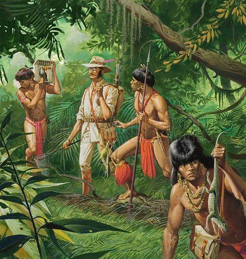 Henry Bates, Explorer of the Amazon Basin
