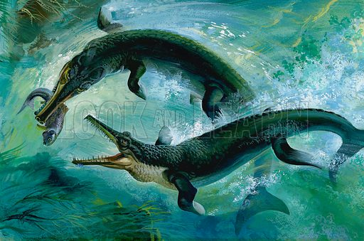 Pre-historic Crocodiles Eating a Fish.  Original artwork for Look and Learn (issue yet to be identifed).