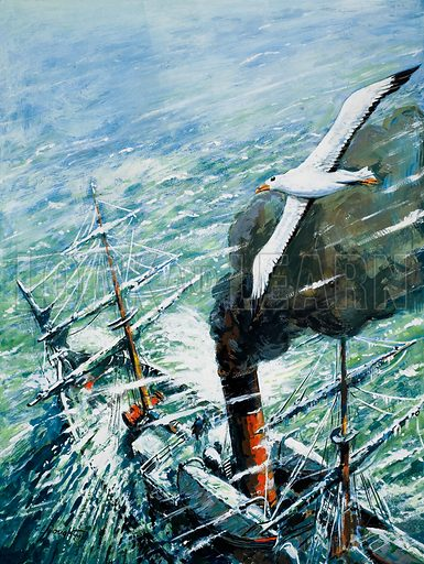 Sir Ernest Shackleton' s Antarctic Expedition on the Quest. Heading south, the Quest encountered heavy seas. An albatross kept her company, diving and soaring around her. Original artwork for illustration on p2 of Look and Learn issue no 1028 (21 November 1981).