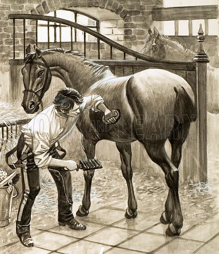 Gunner lad cleaning a horse.