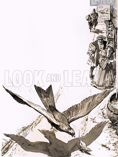 London's Lost Scavenger (the Red Kite). Original artwork from Look and Learn Book 1986.
