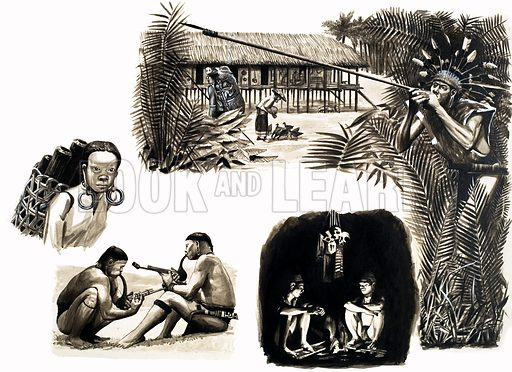 Ancient Peoples of the World: Blowpipe Hunters of Borneo. Original artwork from Look and Learn no. 99 (7 December 1963). Also used in Look and Learn Book 1986.