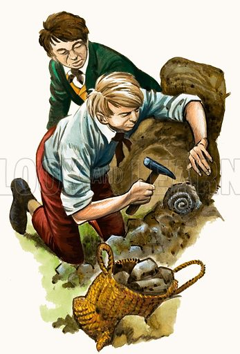 Livingstone and fossil, picture, image, illustration