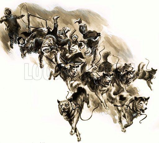 Dog sled disaster. Original artwork (dated 28 December).