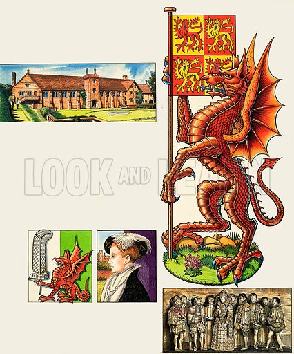Royal Beasts: The Dragon of Cadwaladr. Original artwork from Look and Learn no. 279 (20 May 1967).