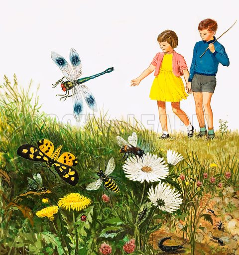 """i"" for insects shows boy and girl in field with flowers and insects. Original artwork from Treasure no. 10 (23 March 1963)."