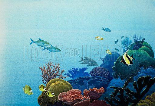 Underwater scene, picture, image, illustration