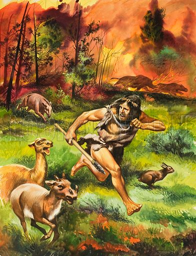 Stone Age Man Fleeing Fire. Original artwork for Look and Learn (issue yet to be identified). Note: The painting appears to be a variation on a theme also represented by A000008.