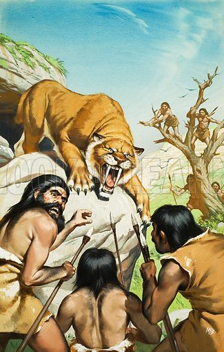 Sabre-toothed tiger and cave men. Original artwork for Look and Learn (issue yet to be identified).