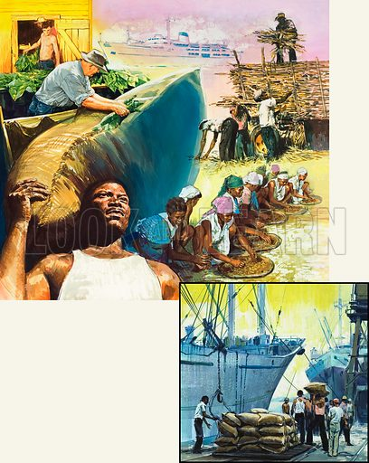 Illustrations possibly showing the export and importing of tobacco from the West Indies. Original artwork.