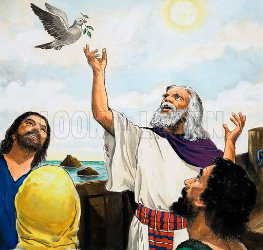Noah and the Dove.  Original artwork for Treasure, The Bible Story or Look and Learn (issue yet to be identified).  Lent for scanning by The Gallery of Illustration.