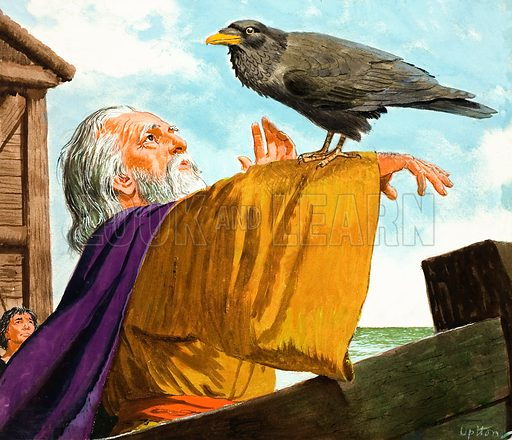 Noah and the Raven.  Original artwork for The Bible Story or Look and Learn (issue yet to be identified).  Lent for scanning by The Gallery of Illustration.