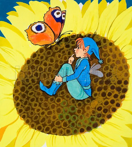 Fairy and butterfly on sun flower