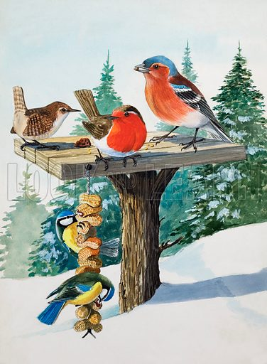 Birds on a bird table.  Original artwork for Once Upon a Time.  Lent for scanning by the Illustration Art Gallery.