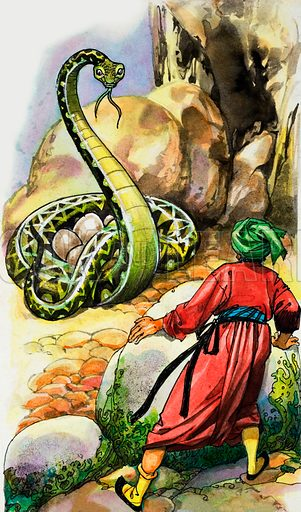 Serpent protecting its eggs.  Lent for scanning by the Illustration Art Gallery.