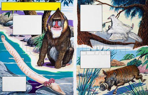 Assorted animals. Original artwork for one of the Treasure books of animals.