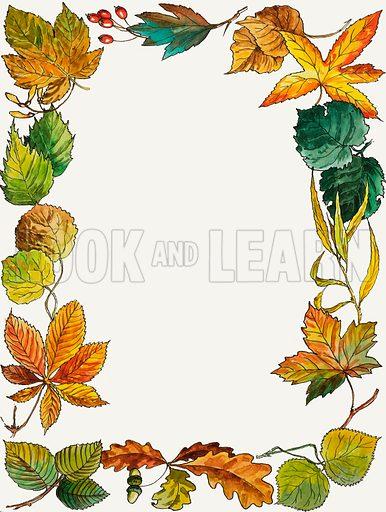 Leaves montage.