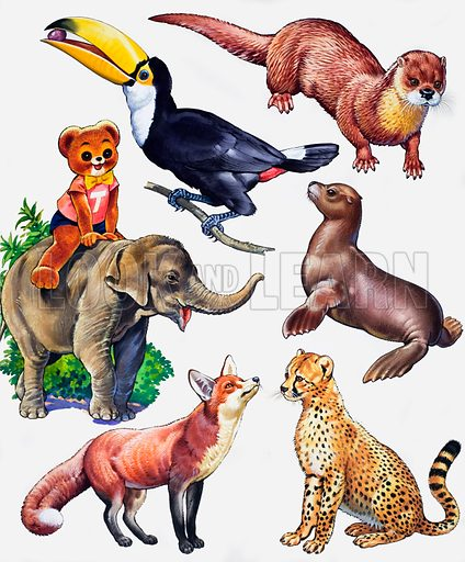 Animal montage. From Teddy Bear Annual. Original artwork loaned for scanning by the Illustration Art Gallery.