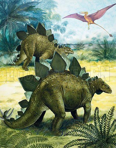 Stegosaurus dinosaur with pterodactyl