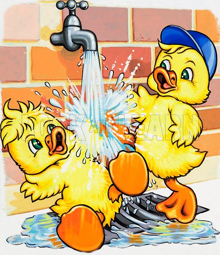 Ducklings discover how to use a tap.