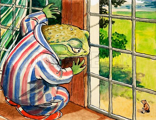 Mr Toad at a window