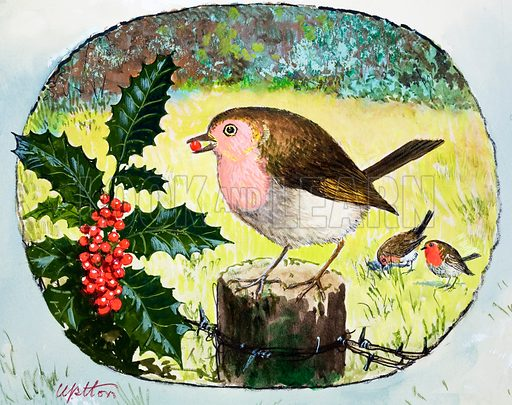 Robin. Probably from Treasure no. 255 (artwork dated 2/12/67).