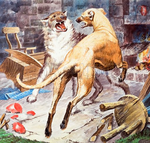 Famous Dogs: Brave Galert. The Welsh legend of Galert, who fought a wolf and saved the young child of his master, Llewellyn. Cover from Look and Learn no. 276 (29 April 1967). Original artwork loaned for scanning by the Illustration Art Gallery.