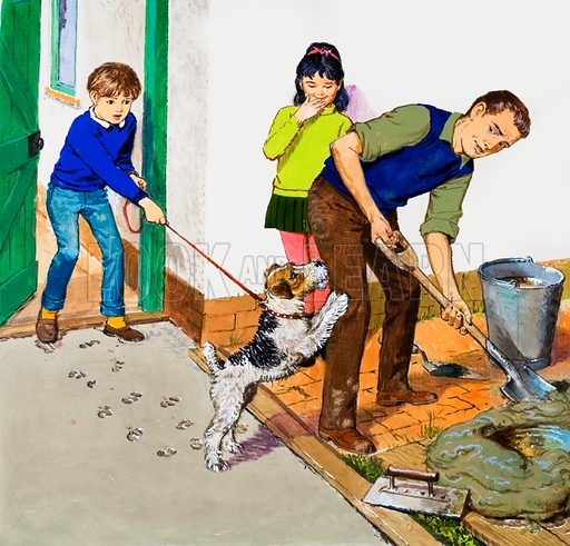 Laying cement. Father's newly laid cement path is ruined by the pet dog.  Original artwork for cover of Treasure issue no 274.  Lent for scanning by the Illustration Art Gallery.