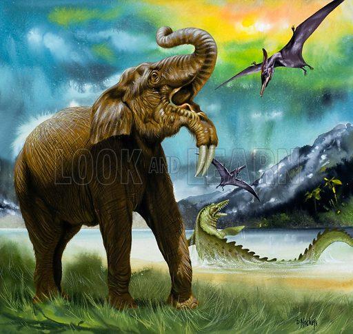 Pre-historic animals.