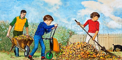 Sweeping up autumn leaves.