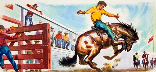 Bucking Broncho at the Rodeo.