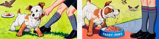 Paddy Paws. From Teddy Bear (22 February 1964). Original artwork loaned for scanning by the Illustration Art Gallery.