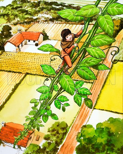 Jack and the Beanstalk. From Once Upon a Time (1969). Original artwork loaned for scanning by the Illustration Art Gallery.