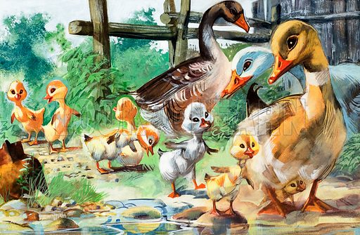 The Ugly Duckling, fairy tale by Hans Christian Andersen.