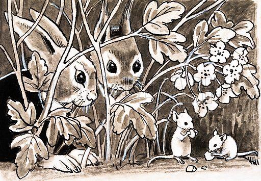 Rabbits and mice.