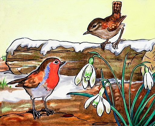 Robin Redbreast and Jenny Wren.