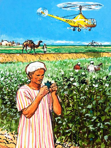 Unidentified arab farmer with camel and helicopter in background. Original artwork.