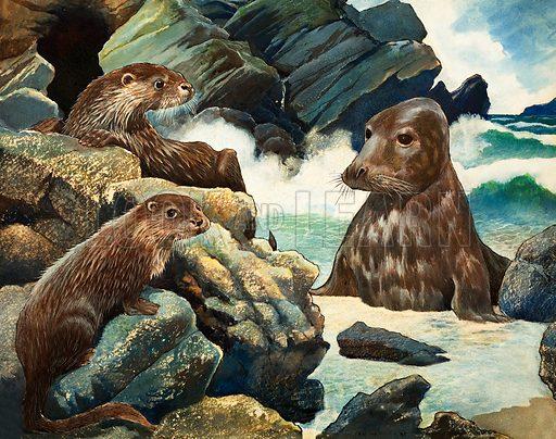 Otters and Walrus. Original artwork.