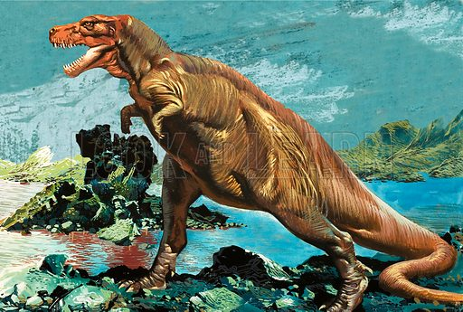 Tyrannosaurus Rex,  picture, image, illustration