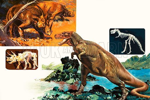 Dinosaurs and Skeletons. Stegasaurus and Tyranosaurus. Original artwork.