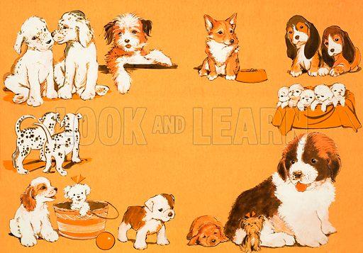 Puppy dogs. Original artwork.