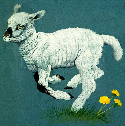 Lamb. Original artwork from Once Upon a Time 7 (29 March 1969).