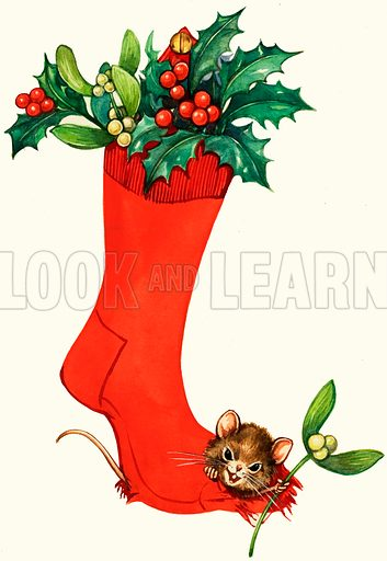Mouse in a Christmas sock.