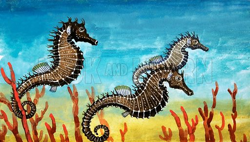 Seahorses. Original artwork from Once Upon a Time 70.