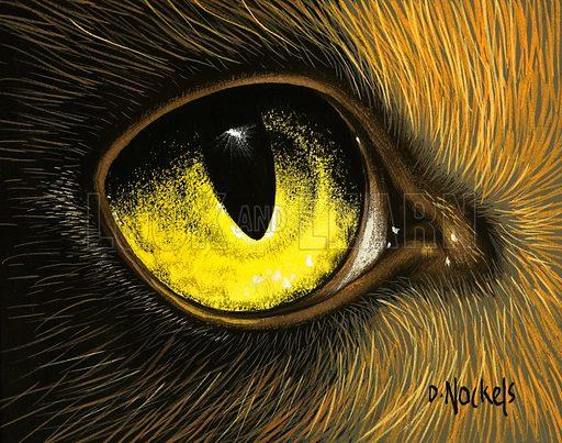 Eye of the Eagle.