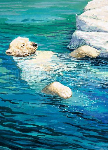 Nature Wonderland: Playful Polar Bears. From Treasure no. 387 (13 June 1970).