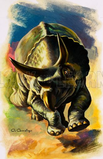 Triceratops, picture, image, illustration