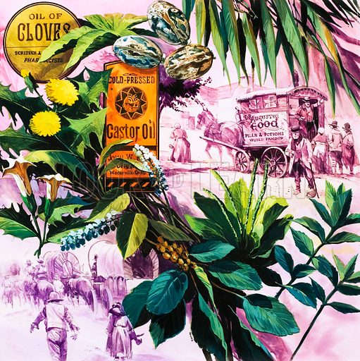 Nature's Medicine Chest. Original artwork from Look and Learn Book 1977.